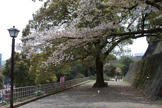2012-kyushu-545