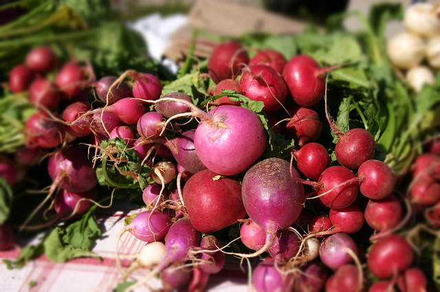 chattanooga main st farmers market radishes