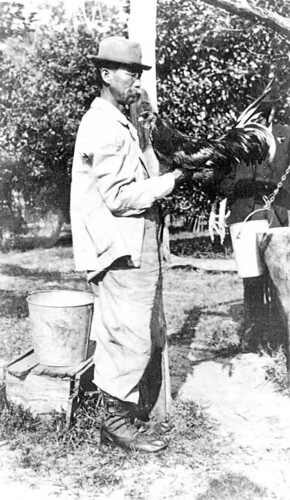Pictured here with his pet rooster, March, Lue Gim Gong's work with citrus trees helped develop a frost-tolerant orange after a disastrous winter in Florida.