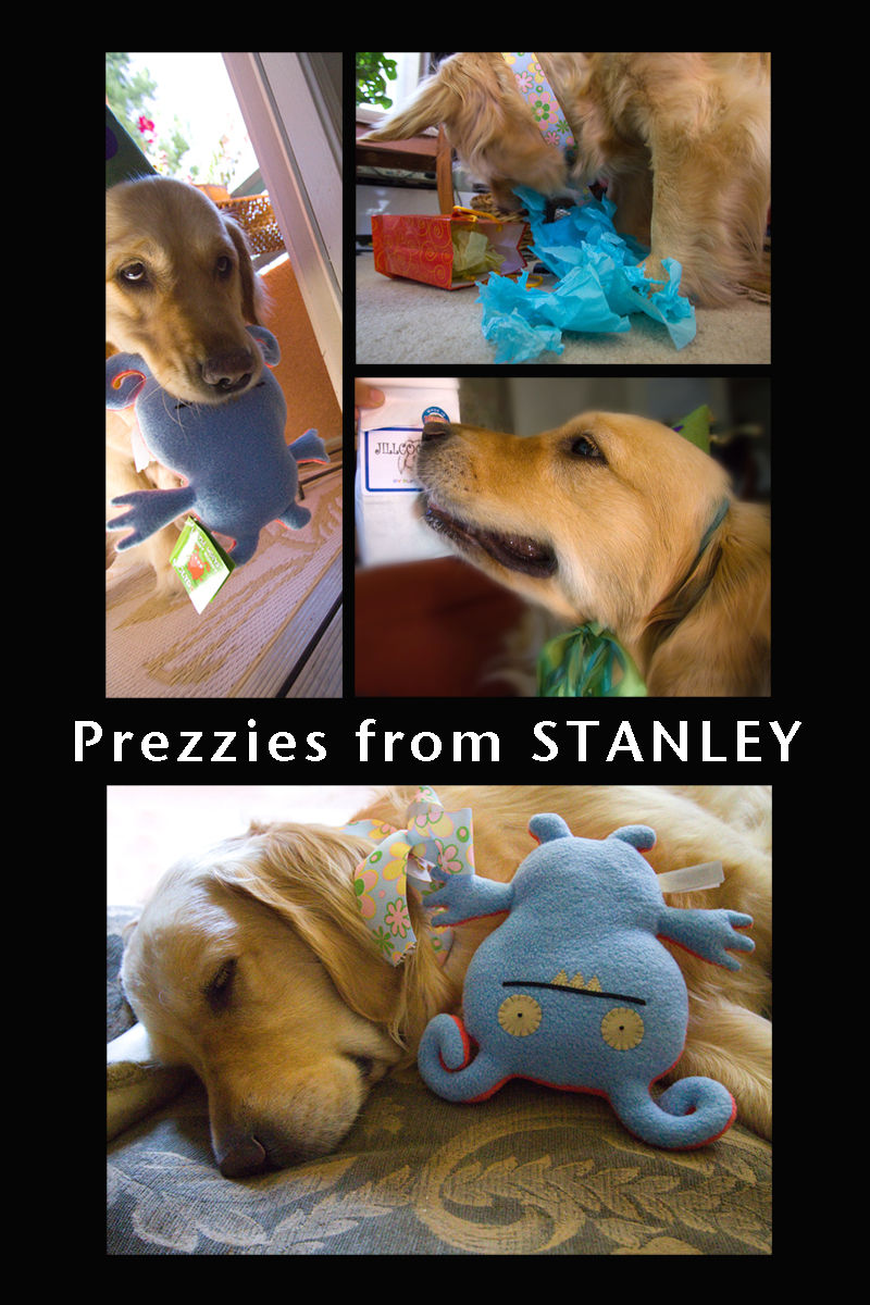 Prezzies from Stanley