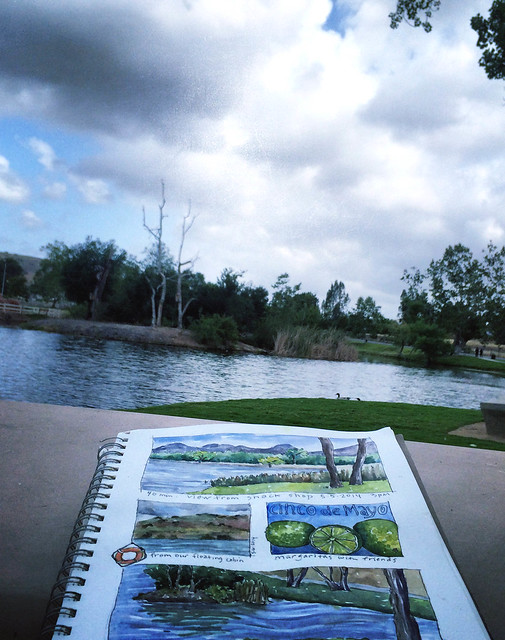 from my sketchbook ~ santee lakes