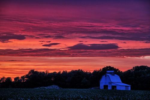sunset illinois homer