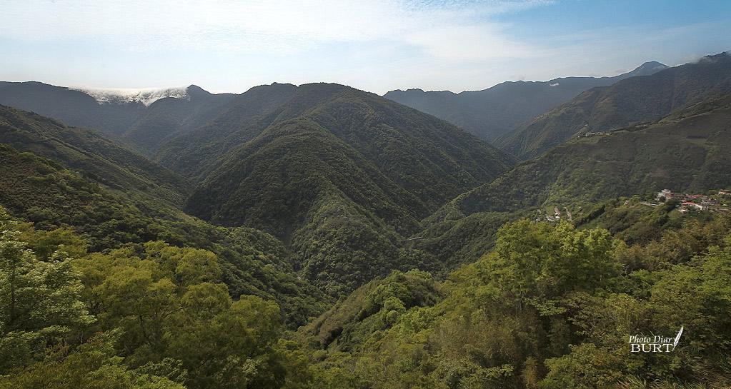 上巴陵觀景臺景致