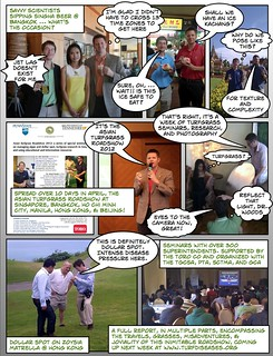 asian_turfgrass_roadshow_comic
