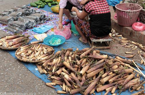 Bamboo Shoots and River Weed at the morning market