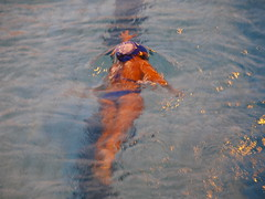 800m nage libre