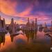 Mono Lake Sunset by Chip Phillips