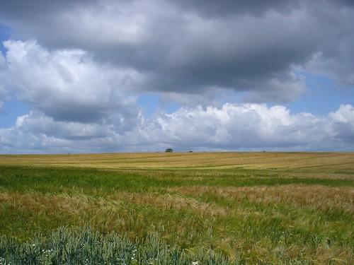 Angeln - Landschaft in Schleswig-Holstein