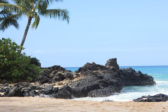 Maui2012038.jpg