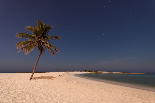 longexposure trip vacation moon tree beach night stars sand fullmoon atlantis palmtree moonlight bahamas supermoon