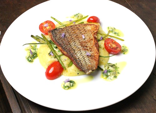 pan fried sea bass with garlic scapes and sauce gribiche