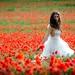 The Plastic Bride by VicenÇ