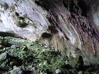 Entrada a cueva Coventosa (Alto Asón, Cantabria)