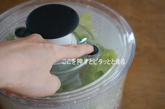 saladsponner008
