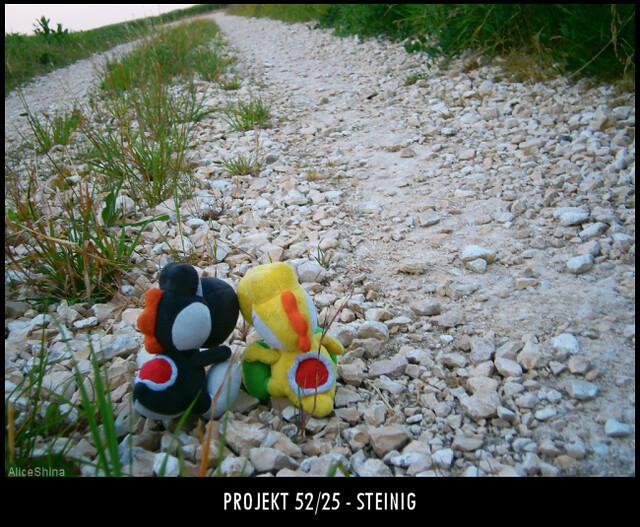 Projekt 52/25 - Steinig