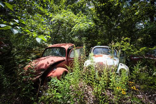"Missouri Notley ""Notley Hawkins"" 10thavenue http://www.notleyhawkins.com/ ""Missouri Photography"" ""Notley Hawkins Photography"" ""Rural Photography"" 2014 July Midwest ""Rural USA"" evening ""Columbia Missouri"" ""B&C Salvage Yard"" ""Salvage Yard"" ""Bone Yard"" ""Auto Yard"" ""Auto Salvage"" ""B&C Auto Services"" ""Freeburg MO"" ""Freeburg Missouri"" ""Osage County MO"" ""Osage County"" ""Junk Yard"""