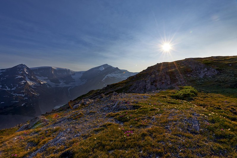 Last Sunrays on Wilcox Pass Trail with view on the Dome Glacier - Jasper National Park