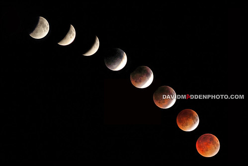 Flickr bloodmoondmadden