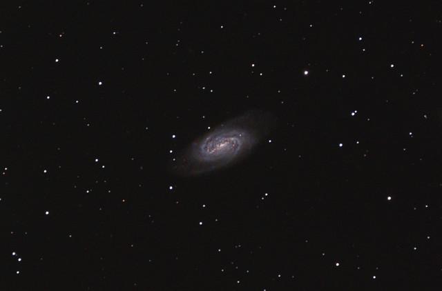 NGC 2903 in Leo April 2014