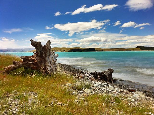 Shores of Lake Pukaki