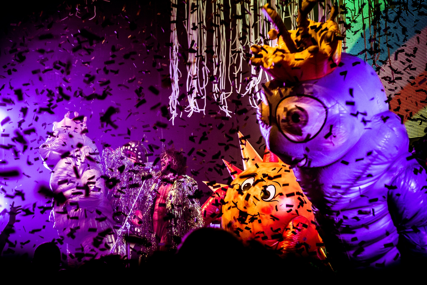 The Flaming Lips 19