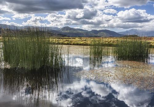 ecuador lagunadecolta laguna lagoon reflections riflessi