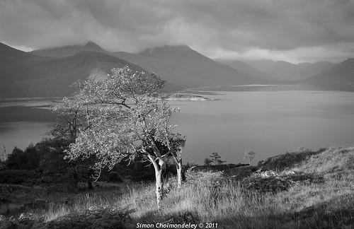 scotland lochaber quoich