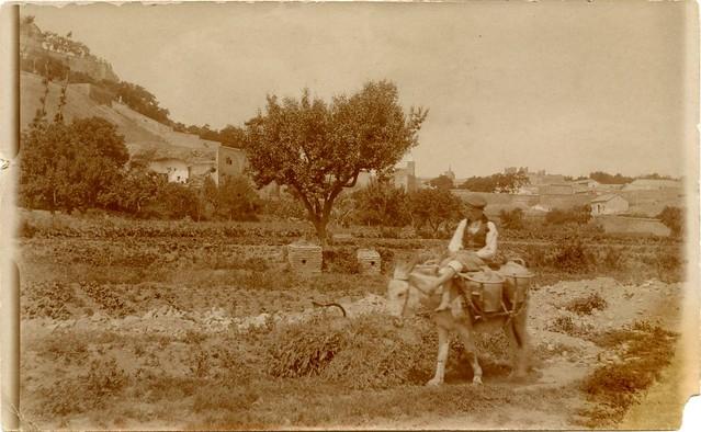 Huerta del Granadal a principios del siglo XX. Fotografía de D. Pedro Román Martínez. Diputación de Toledo, Centro de Estudios Juan de Mariana