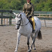 Small photo of Abram Hall Dressage June 2011 (25)