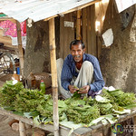 Betel Leaf Vendor - Bagerhat, Bangladesh