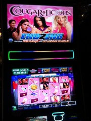 Video Slot Machine: Cougarlicious