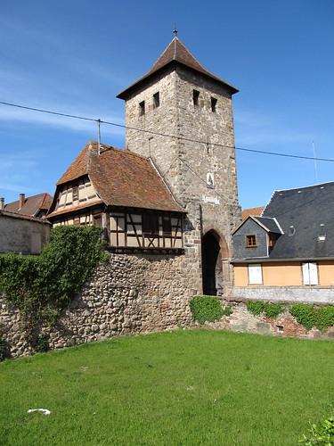 dambach la ville- chateaux- bernstein- ortenbourg 333