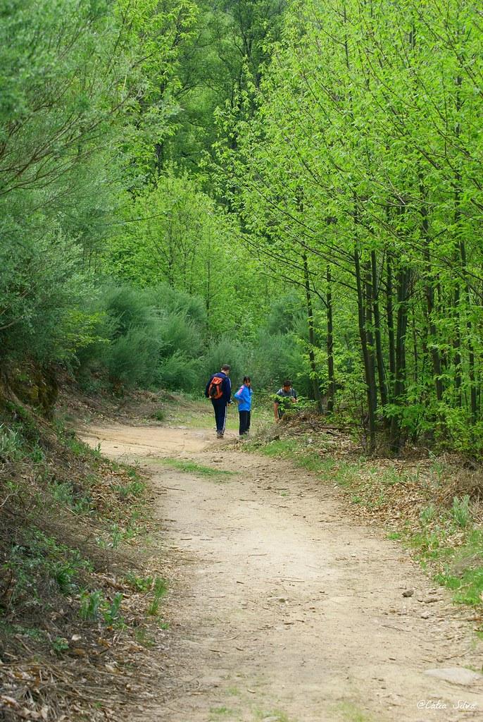 Reserva Natural de la Garganta de los Infiernos_Valle del  Jerte (21)