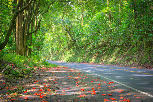 Hana Highway [EXPLORED]