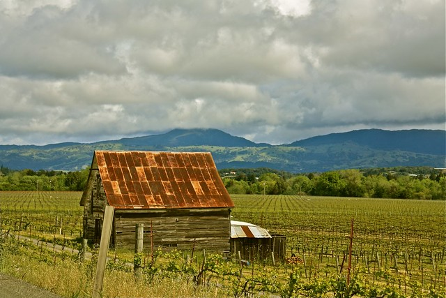 larry freeland alpine ca