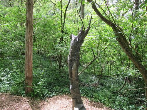 figure in tree trunk