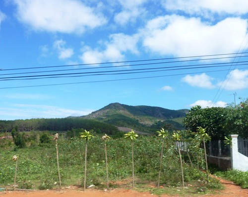 V-Route Pleiku-Quy Nhon (11)