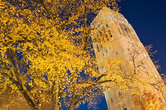 University of Michigan from Flickr via Wylio