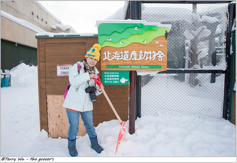 Day5 - 旭山動物園 - 企鵝散步-41