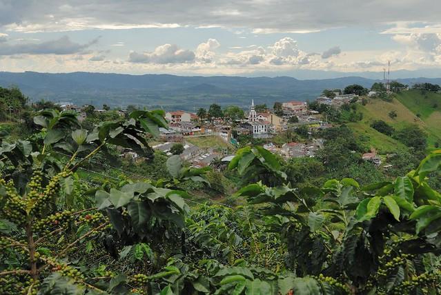 Imagen Panorámica de Buenavista, Quindio