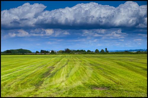 blue sky canada green field grass clouds rural landscape bc cut britishcolumbia farm delta cumulus hay puffy mowed zd graduatednd graduatedneutraldensity 1260mm olympuse3 eastdelta tyeechoice