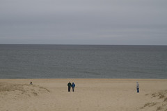 20120325 - Right Whales off Race Point