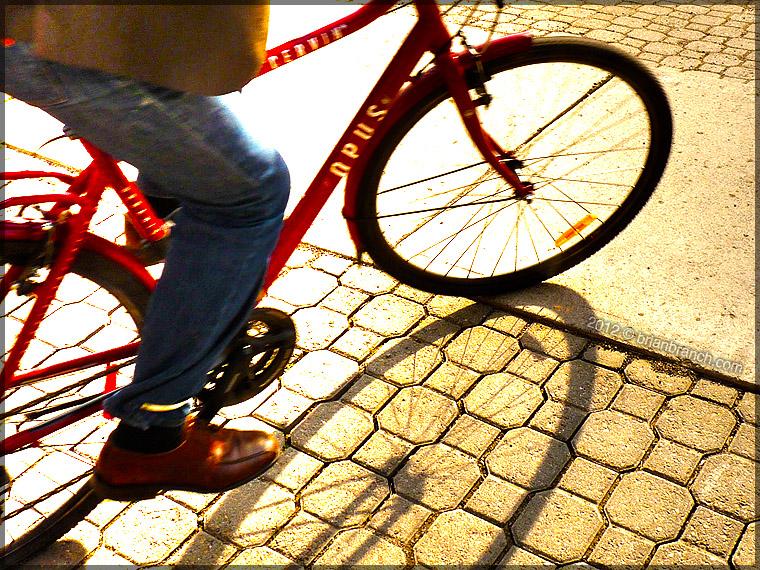 P1250062_opus_bike