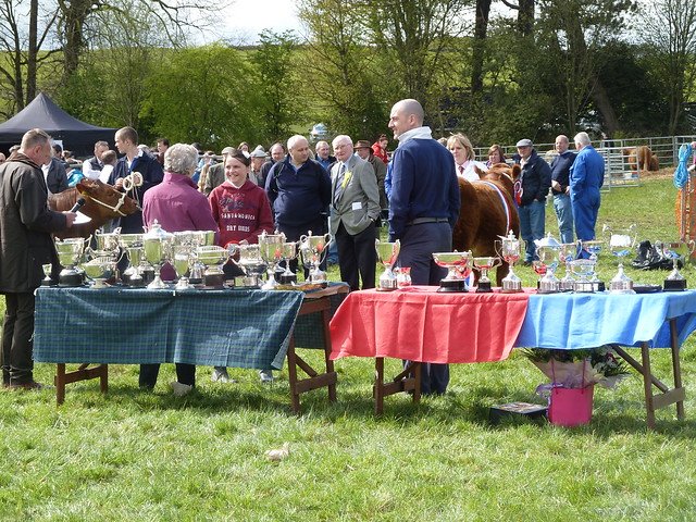 Prizes on Display at Neilston Show