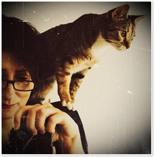 continuing revelation (selfportrait with tabby cat)