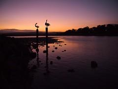 Merimbula sunset view (Australia)