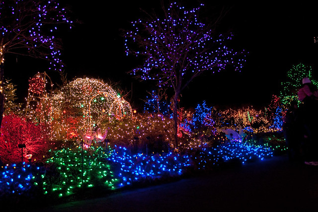 Christmas lights in the Van Dusen Gardens 5
