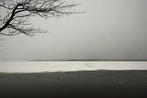 Pelican Lake II
