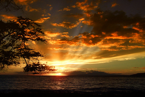 Golden Rays over Maui