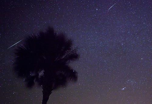 Geminid meteor 4